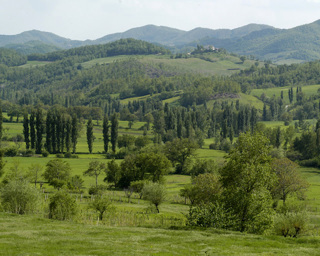 Val di Chiascio, near Gubbio, in the green Umbria