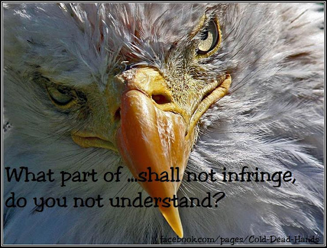 What part of ...shall not infringe