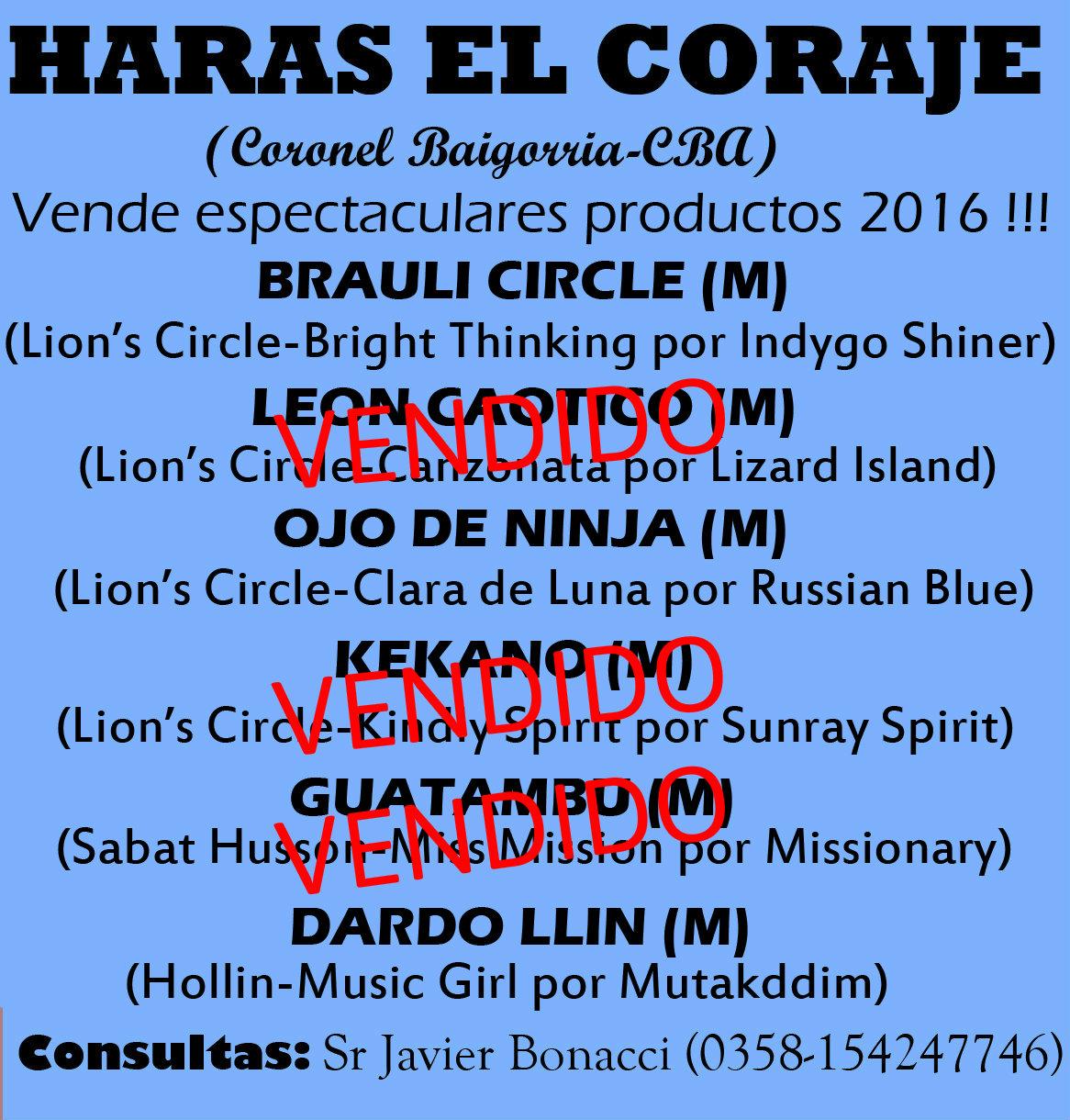 HS EL CORAJE 1E