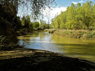 Colusa-Sacramento River State Recreation Area will remain open