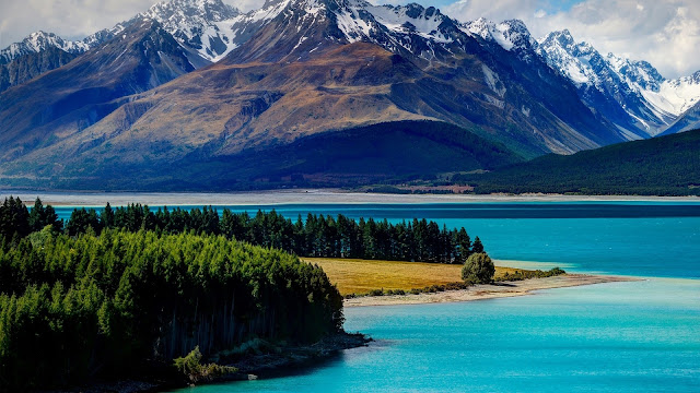 Lake Tekapo New Zealand Mountains Forest Trees HD Wallpaper