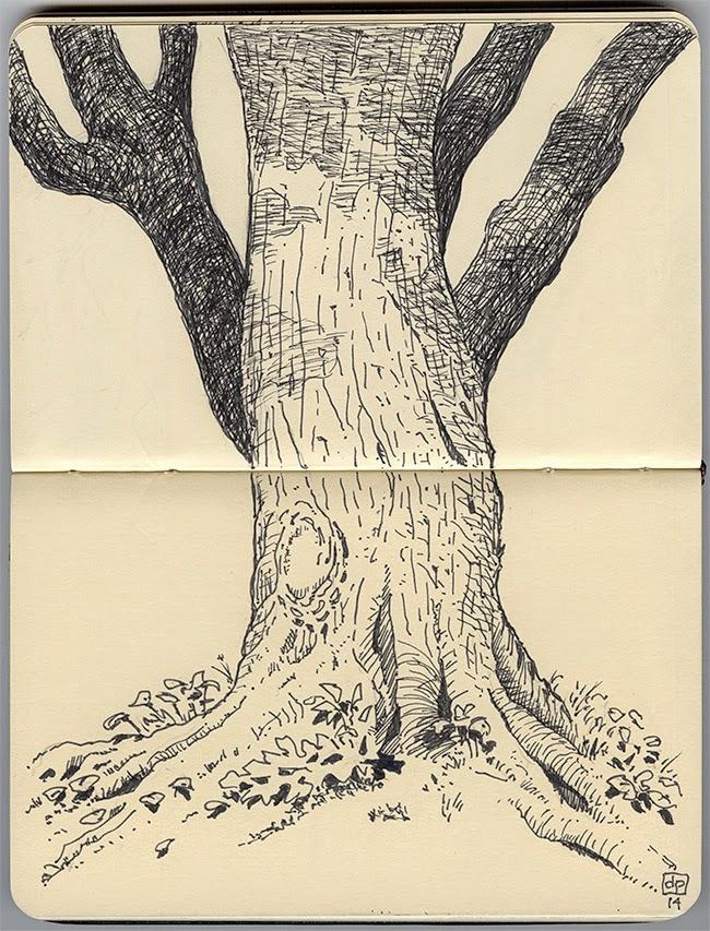 les dessins de daniel tronc d 39 arbre tree trunk. Black Bedroom Furniture Sets. Home Design Ideas