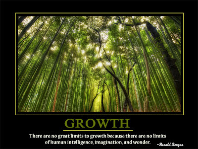 Growth  There are no great limits to growth because there are no limits  of human intelligence, imagination, and wonder.