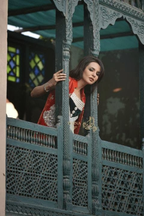 New Party Wear Dresses Collection 2014 For Women And Girls By Hina Butt