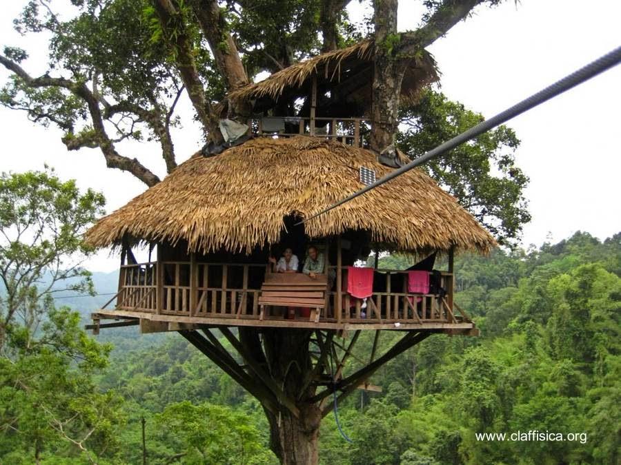 Arquitectura de casas: creativas casas y cabañas hechas con ...