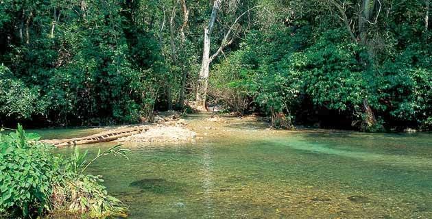 Balneario Agua Fría, Colima