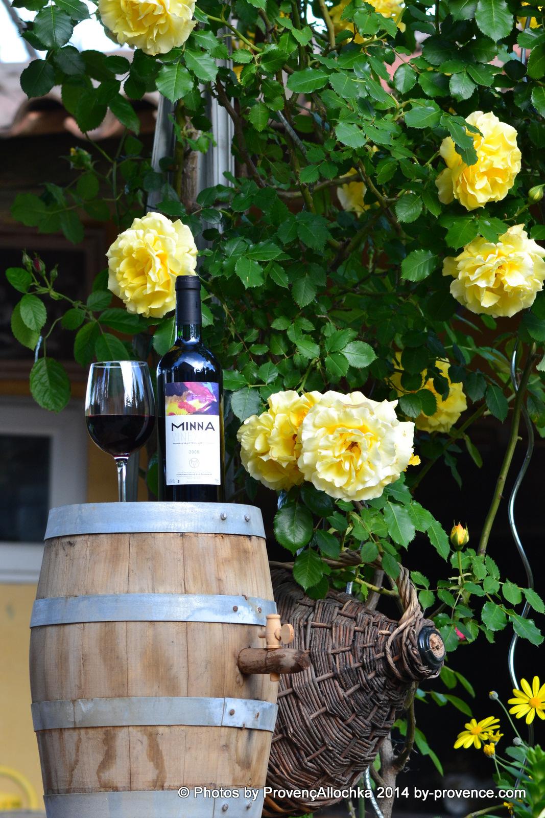 rose jaune,Provence,fleurs
