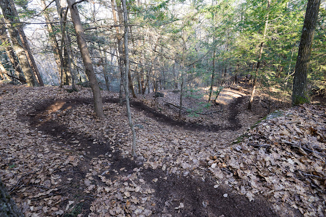 Sinuous singletrack trail above the east side of McLeod Pond at Catamount State Forest