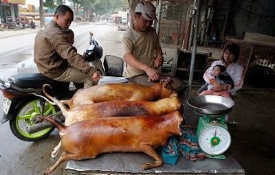 Thịt chó của VN vào danh sách những món ăn kỳ dị thế giới