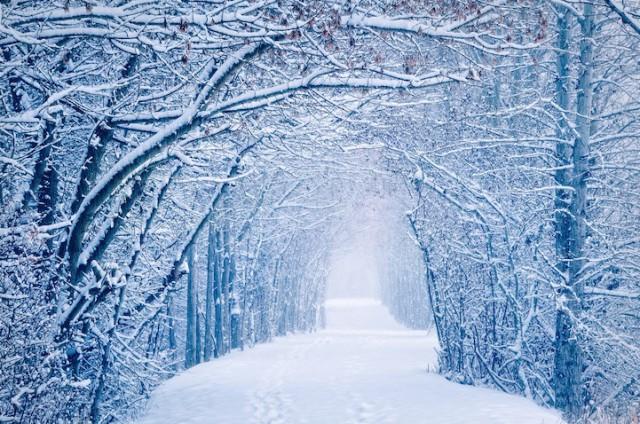 Salmon Arm Canada - 19 Breathtaking Photos Of Winter Wonderlands Around The World