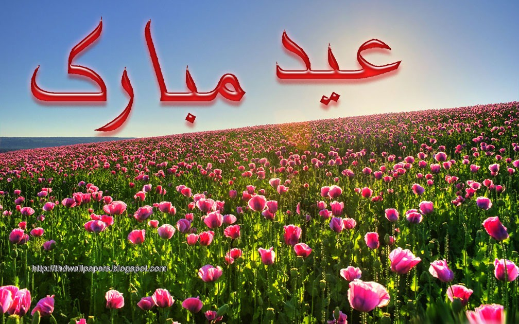 Eid ul adha zuha mubarak flowers greeting cards in urdu hd wallpapers eid ul adha zuha mubarak flowers wallpapers greeting cards in urdu 009 m4hsunfo Image collections