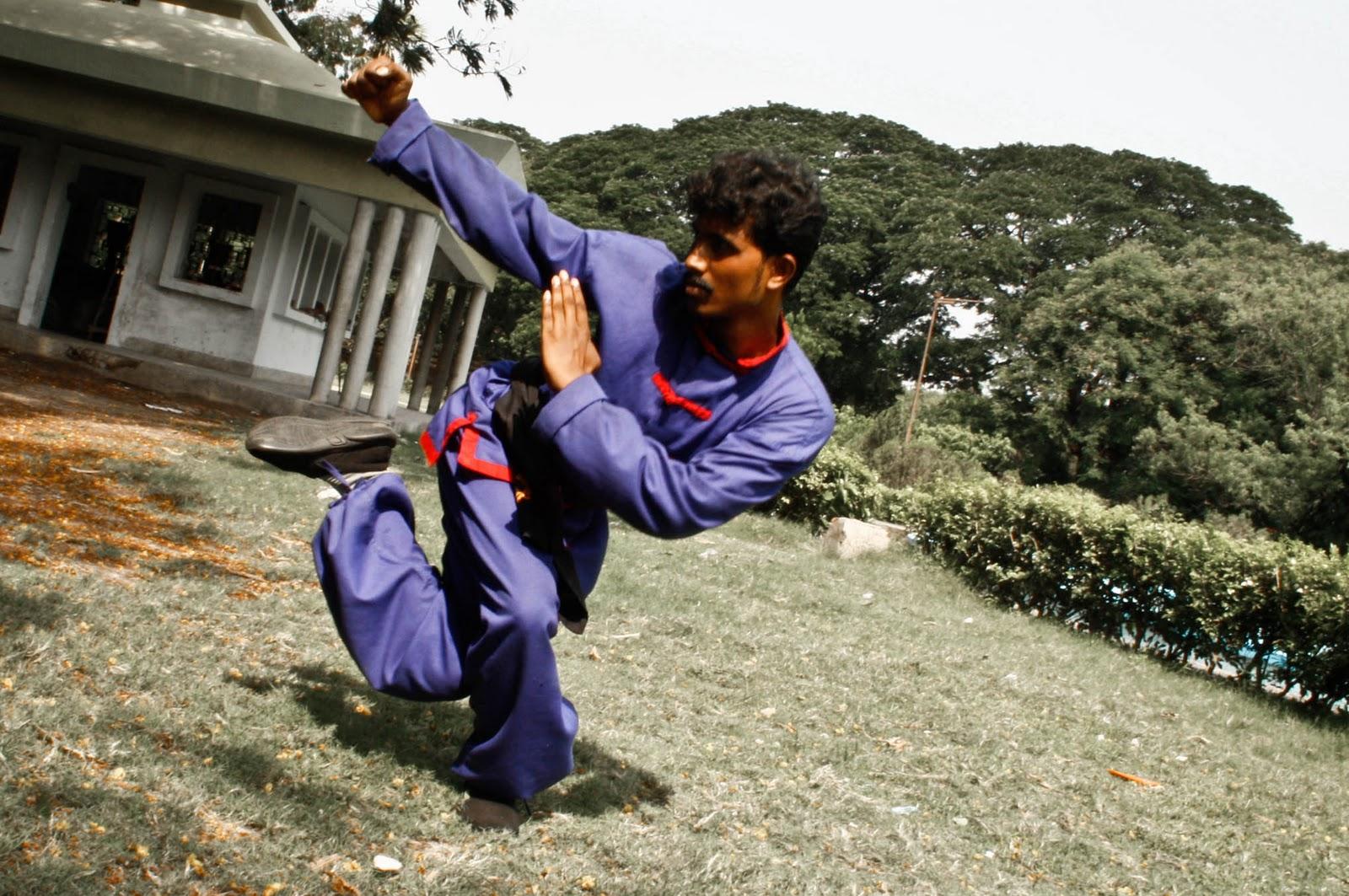 snake fist kung fu pdf