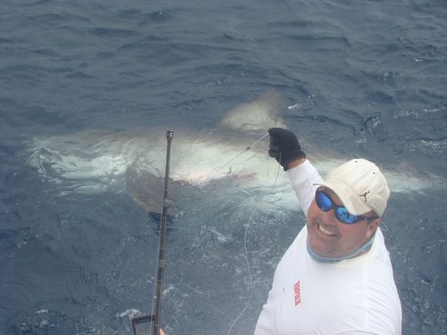 Anglers off Fort Lauderdale, Florida had the surprise of a lifetime