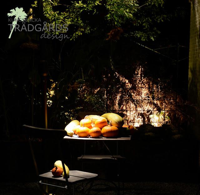 Trädgårdsbelysning