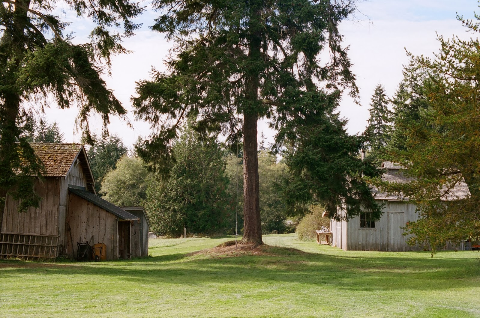 Whidbey Island Writers Conference