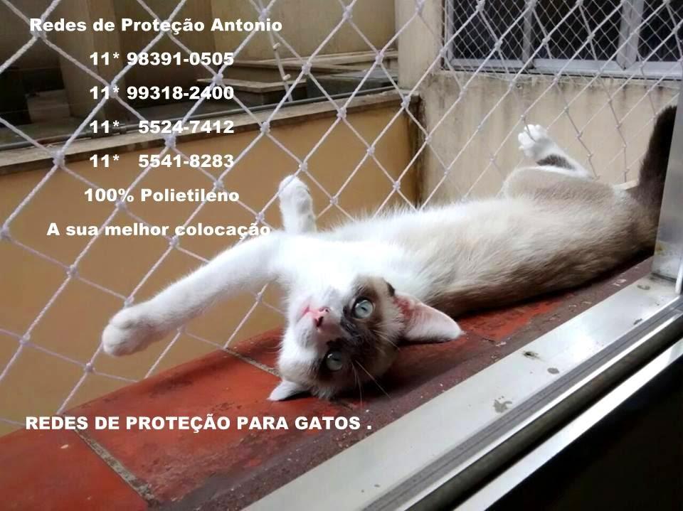 Redes de Proteção * Para Gatos