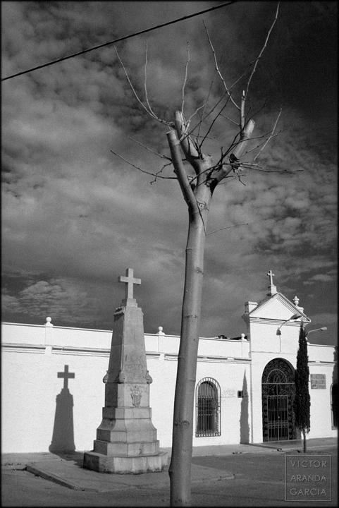 fotografia, alboraia, cementerio, limites, serie, arte, valencia