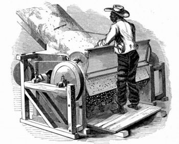 cotton industry during the 1800s The production of cotton for export this tied egyptian agriculture to particular  industrial developments, and also implicated egyptian agriculture in the initial.