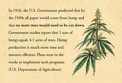 .. some facts on hemp in agriculture ..