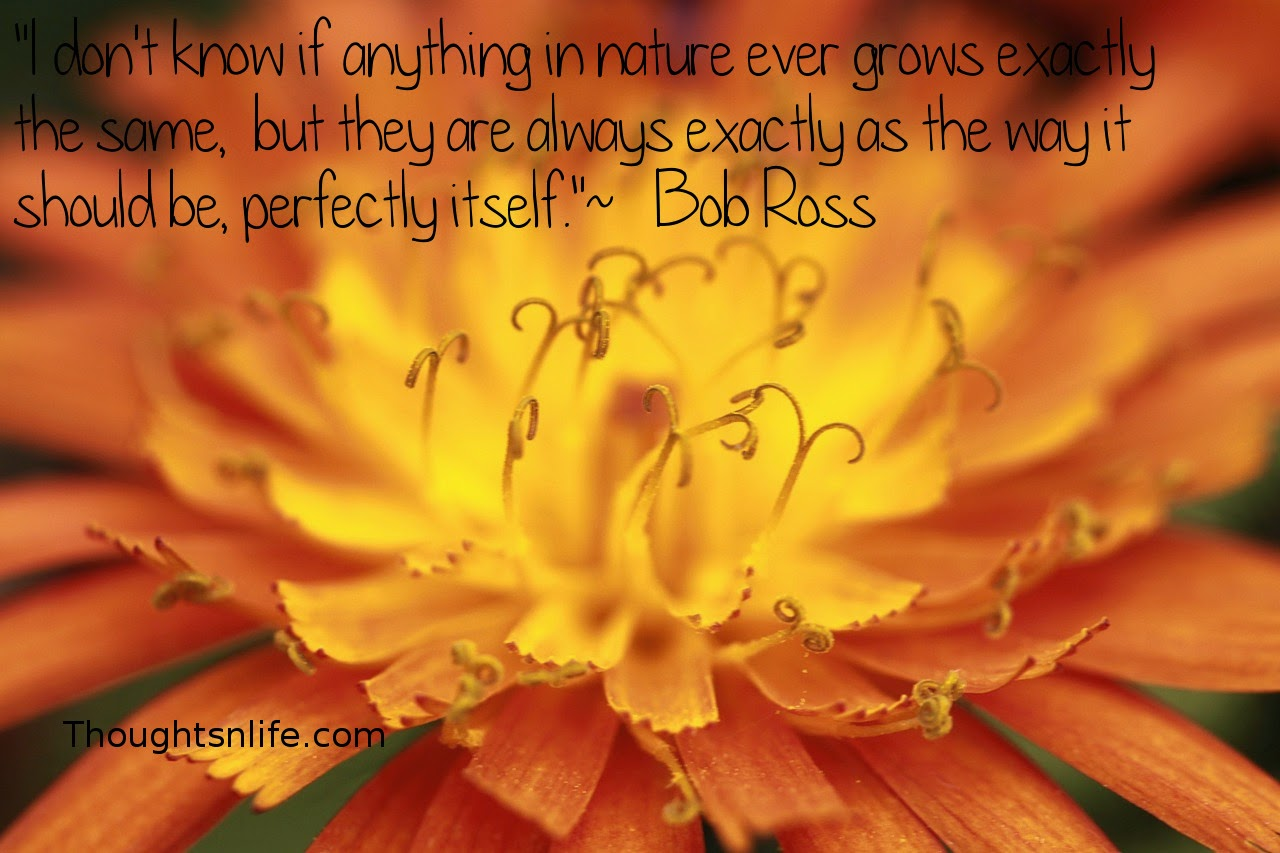 """Thoughtsnlife.com: """"I don't know if anything in nature ever grows exactly the same,  but they are always exactly as the way it should be, perfectly itself.""""  ~   Bob Ross"""