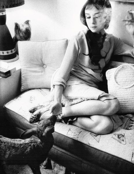 Audrey Hepburn at home with her pet deer.
