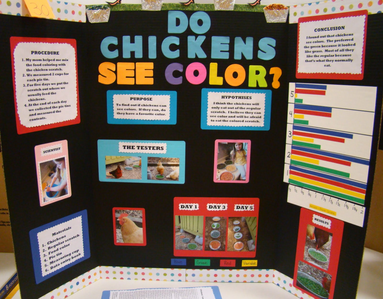 science fair projects with food Find and save ideas about food science on pinterest | see more ideas about food technology, food science experiments and taste buds.