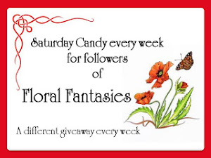 Brenda's Saturday Giveaway