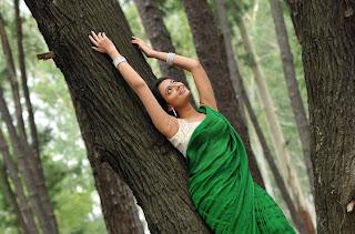 Actress-Nikitha-Narayan-high-resolution-Hot-Saree-Wallpaper-Photos_actressphotosgalleryhub.com_01.jpg