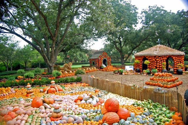 Dallas Arboretum Halloween