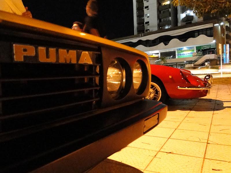 Puma Paraíba