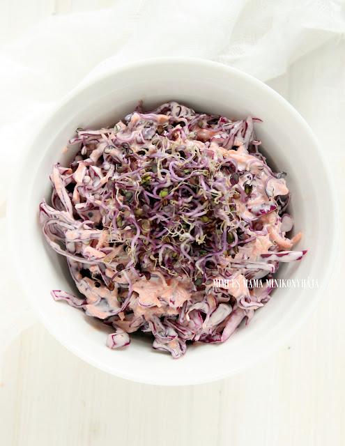 Csírás lilakáposzta-saláta