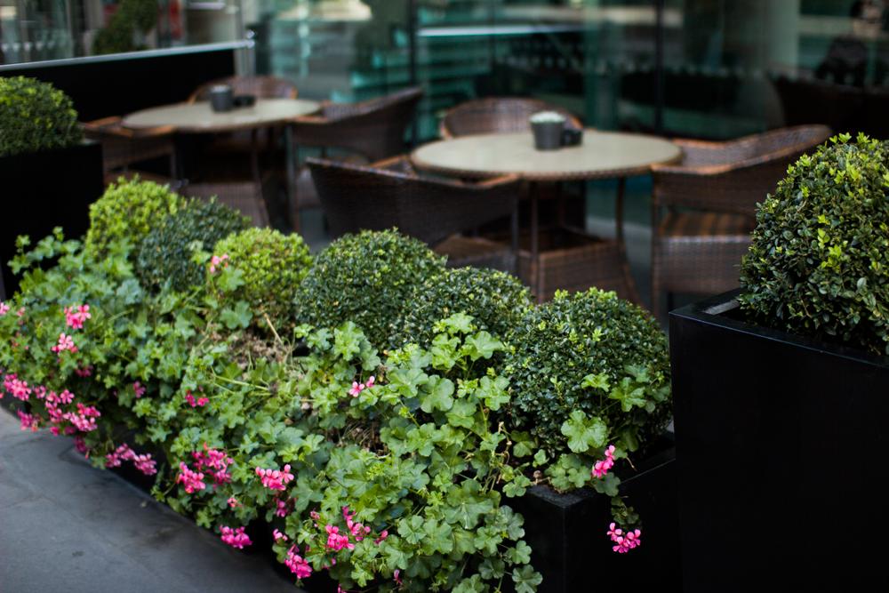 kawiarnia Londyn blog modowy
