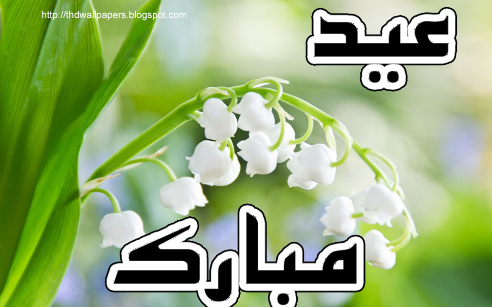 Sweetcouple Free Red White Flowers Eid Ul Adha Mubarak Wish Cards