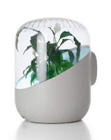 Andrea Air Purifier, Air Filters With Native Plants