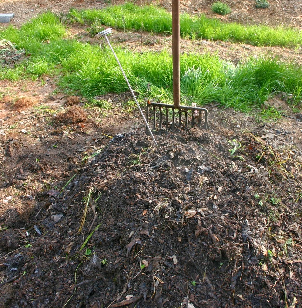 Peces y plantas ornamentales el suelo del estanque for Depuradora estanque
