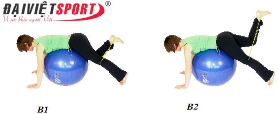 bài taapk gym cho cơ mông