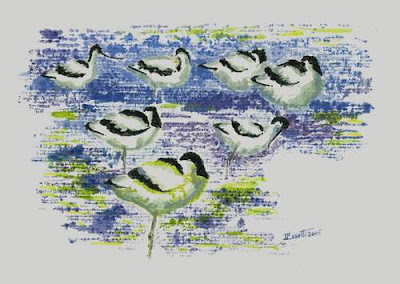 Pied Avocets, Sebkhet Ariana, Tunisia : Oil, Monotype, by Imed Essetti 