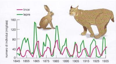 diagramma predazione