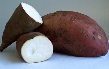Sous les lambrequins le go t de la r union g teau fondant la patate douce - Recette patate douce blanche ...