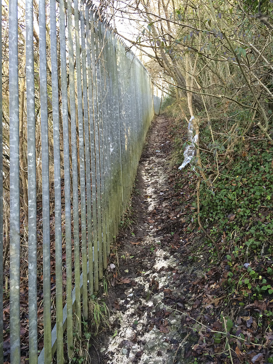 The path up the side of the quarry.  Riddlesdown, 12 January 2014.