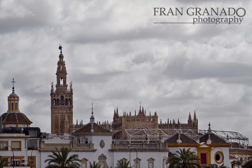 http://franciscogranadopatero35.blogspot.com/2014/02/la-hdad-de-la-esperanza-de-triana-en-su.html