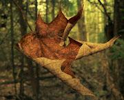 El otoño de la naturaleza y el otoño de la vida lz tdymy ozo
