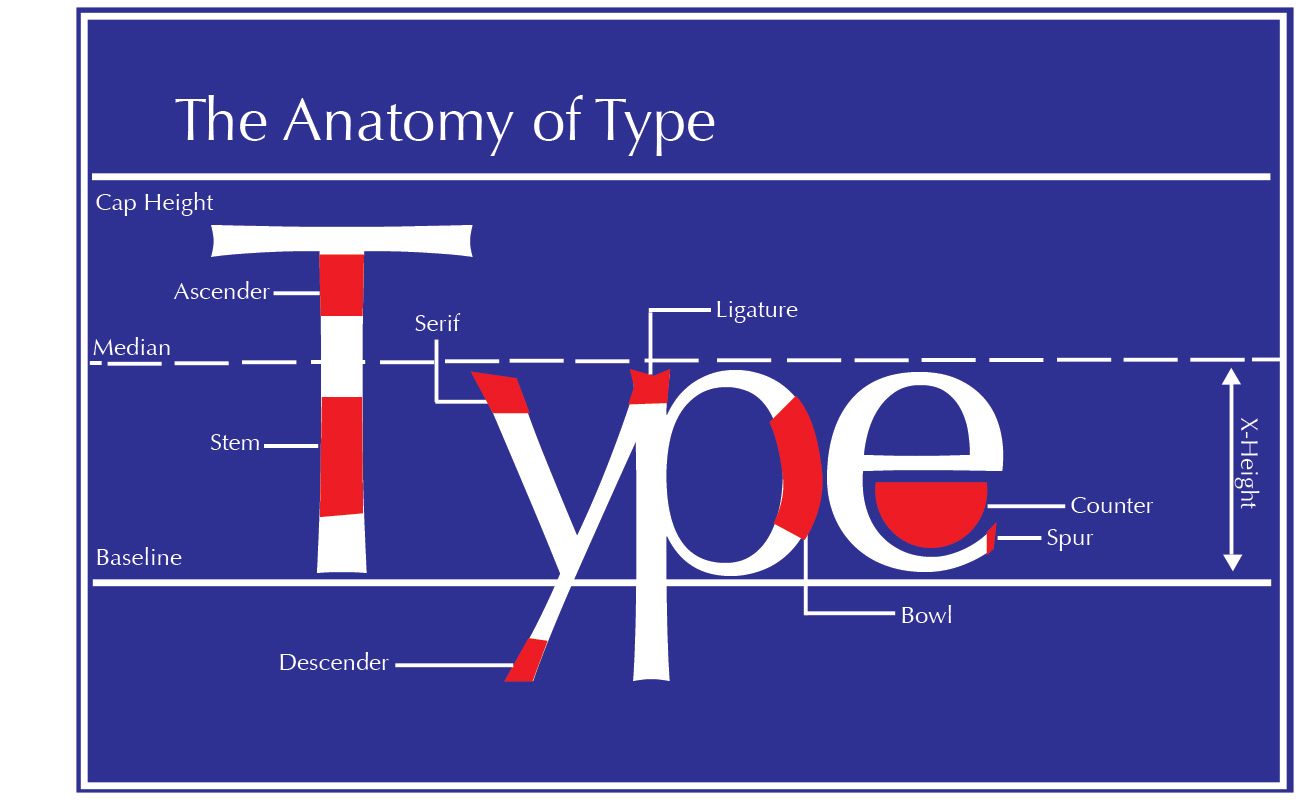 Advanced Graphic Design: VPA 380: Type Anatomy Poster