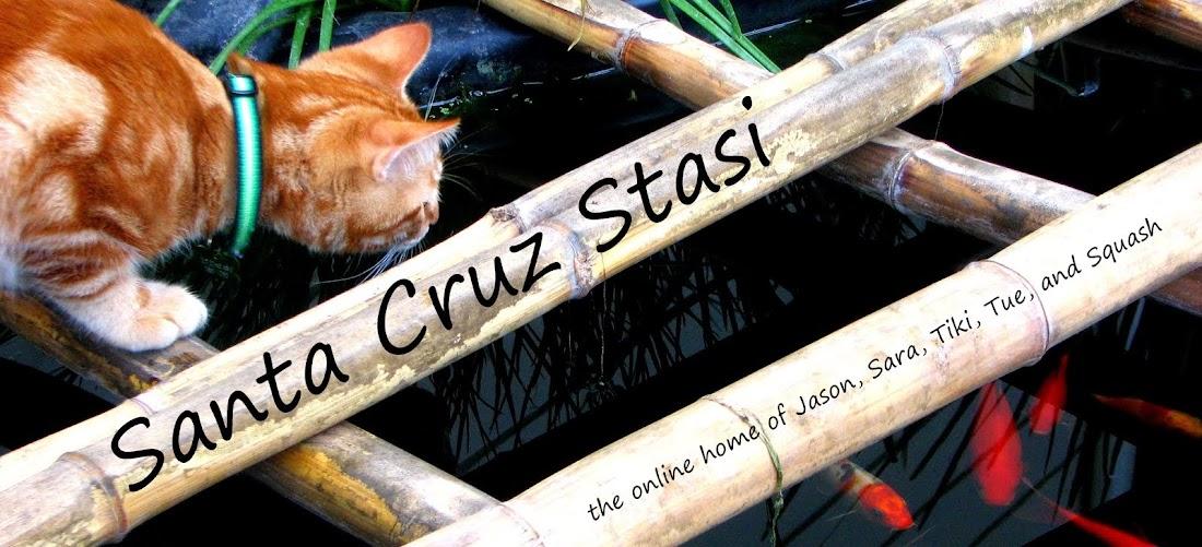 Santa Cruz Stasi