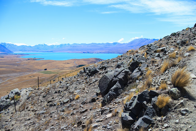 spotting Lake Tekapo from the trail on Mt John