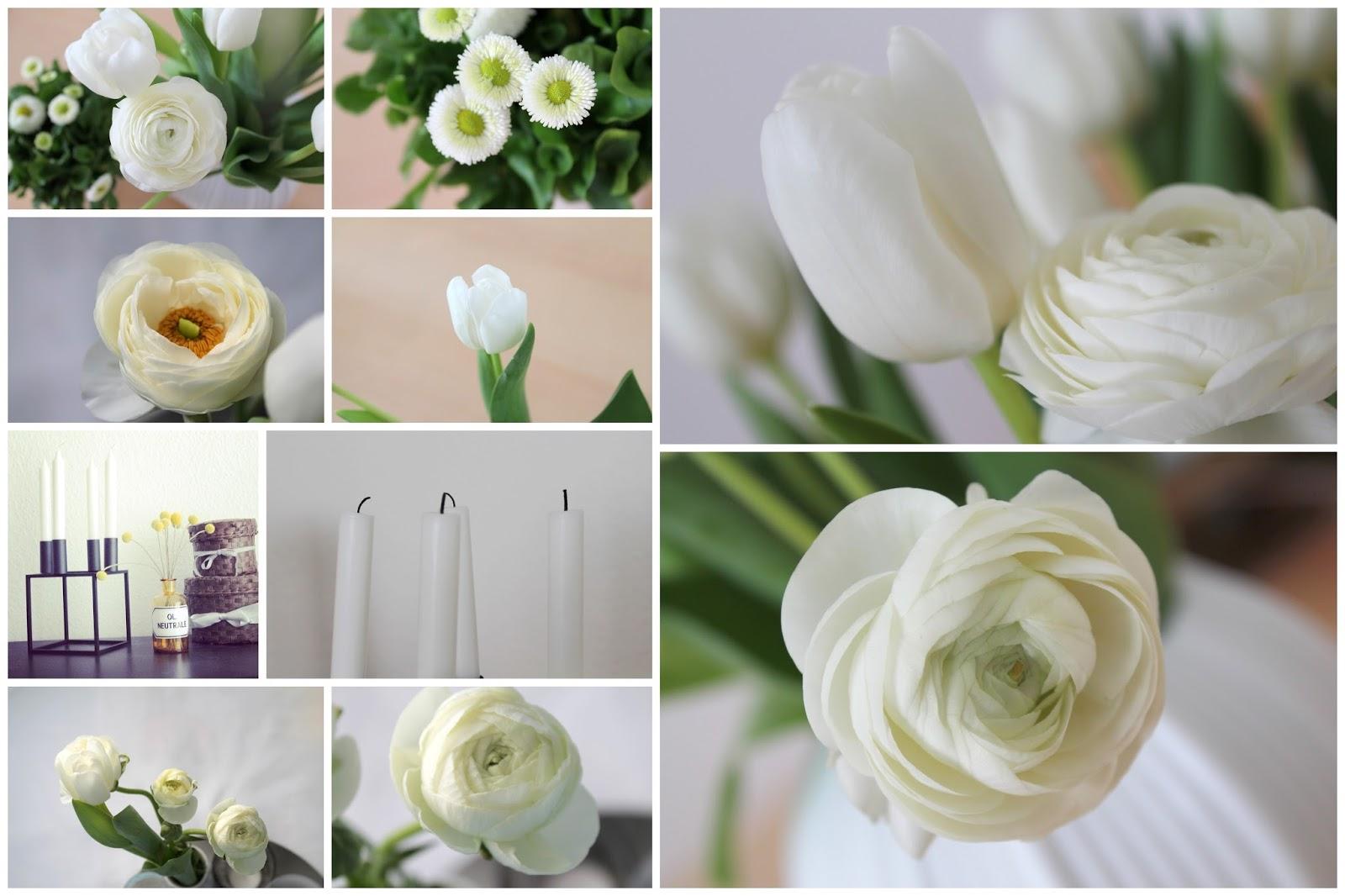 Weisse Liebe im Fruehling simply white