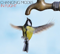 Changing Modes - 'In Flight' CD Review