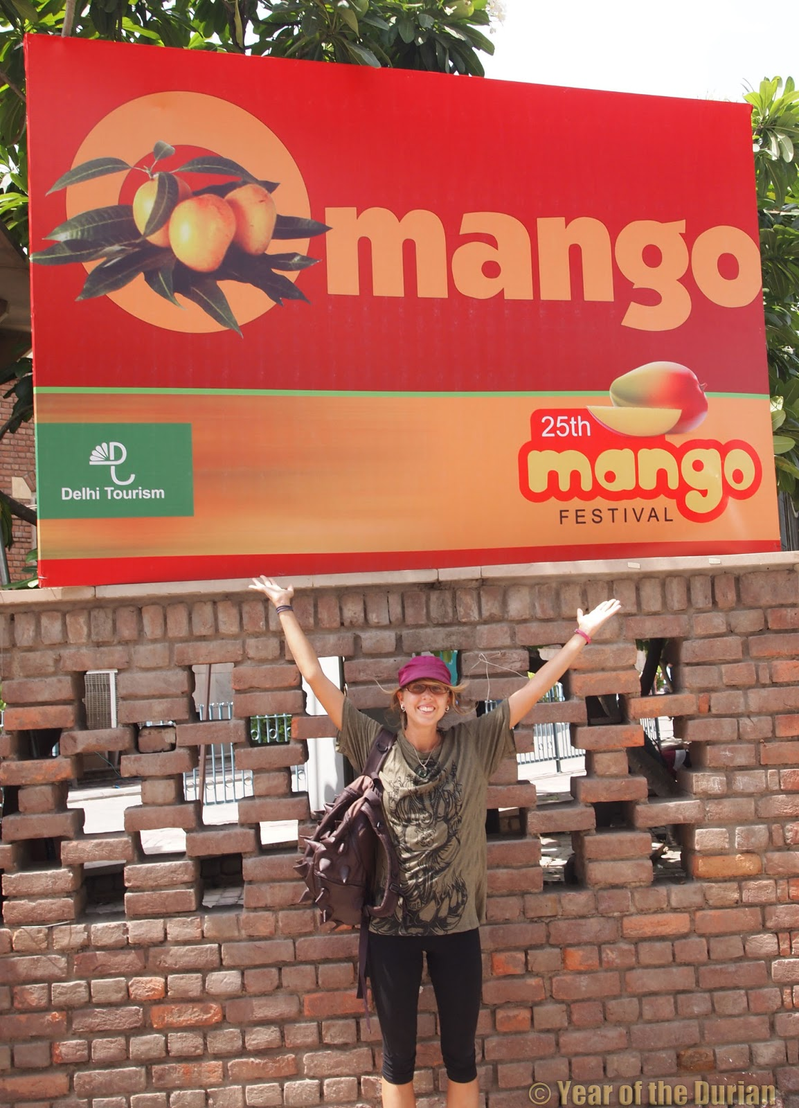 international mango festival photo essay new delhi the real deal hundreds of mouthwatering mangoes mango festival is just 100 meters from the station you re welcome
