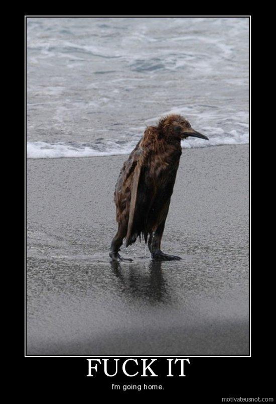 gør hvalsædene havet saltet