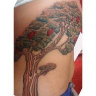 Tattoo Free Tribal Tattoos Tribal Tattoo Designs Tribal Tattoo
